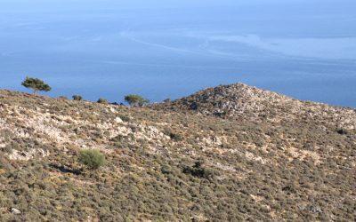 Ancient Elyros, Chania
