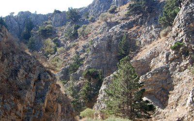 Imbros Gorge, Chania